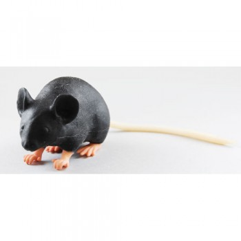 Modèle d'imitation de souris