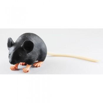 Mouse training simulator